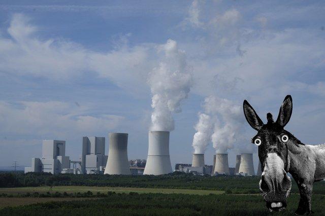 donkey nuke copy.jpg