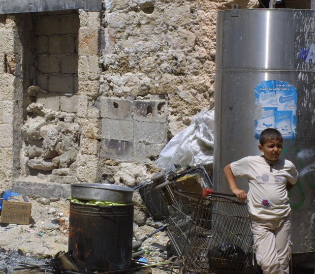 Gaza chilid crop.jpg