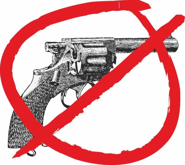 Ervin- No gun