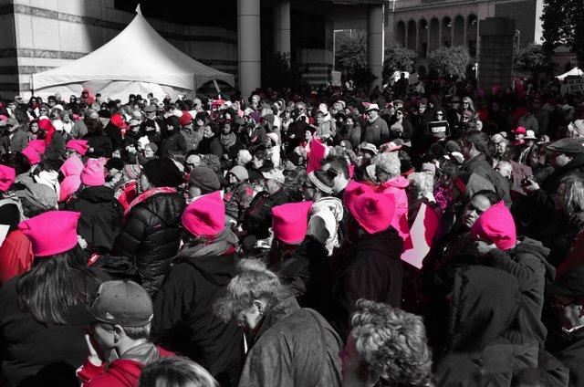 az march pink DSC_1583.jpg