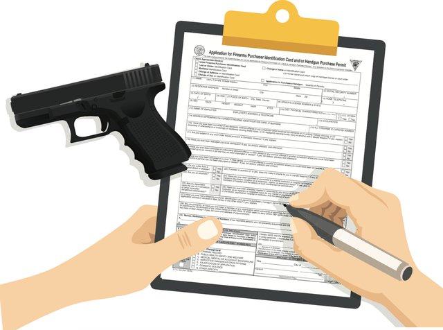 Johnson gun license