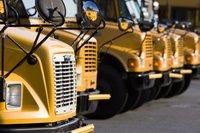 Row of school buses