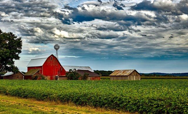 farm-1499693204gQe.jpg