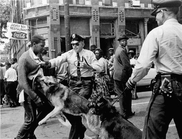 demonstrator-rights-police-dog-reaction-Alabama-Birmingham-May-3-1963.jpg