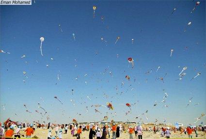 kite2.jpg.jpe