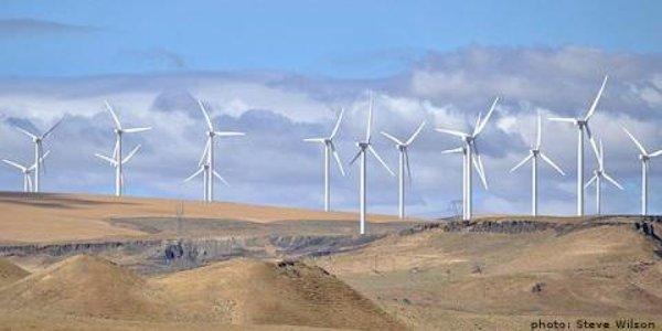 Windmill_Farm_2014_600x300px.png