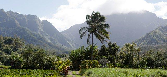 kauai 600x350.png