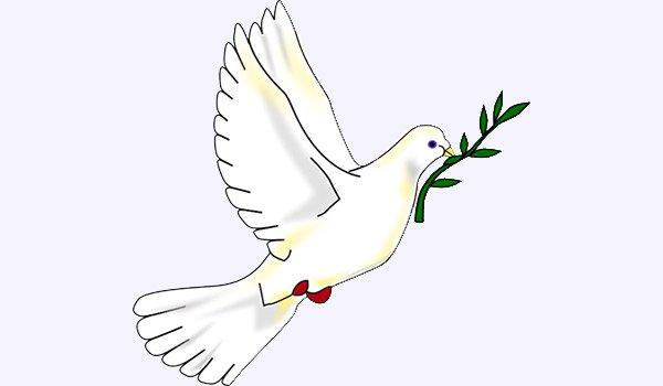 Peace_dove600x350px.jpg.jpe