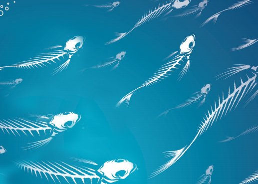 Can We Save Ocean Fish Progressive Org