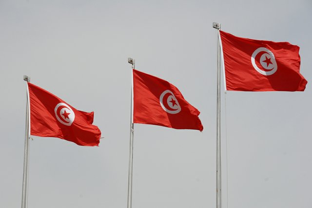 tunisian flags.jpg.jpe