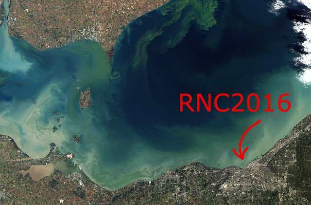 RNC HERE toxic_Algae_Bloom_in_Lake_Erie (1).jpeg.jpe