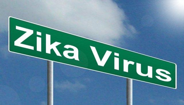 zika-virus.jpg.jpe