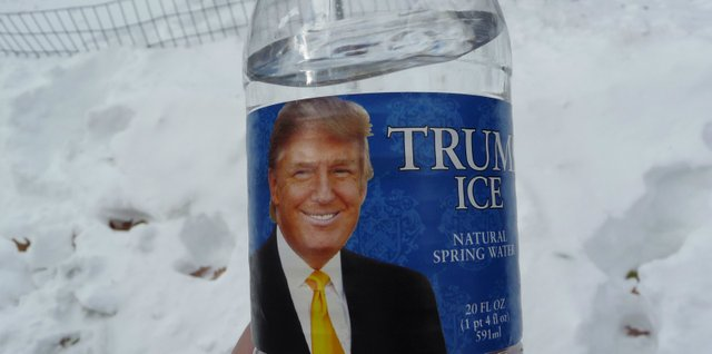 Trump_Ice_(5371360455).jpg.jpe