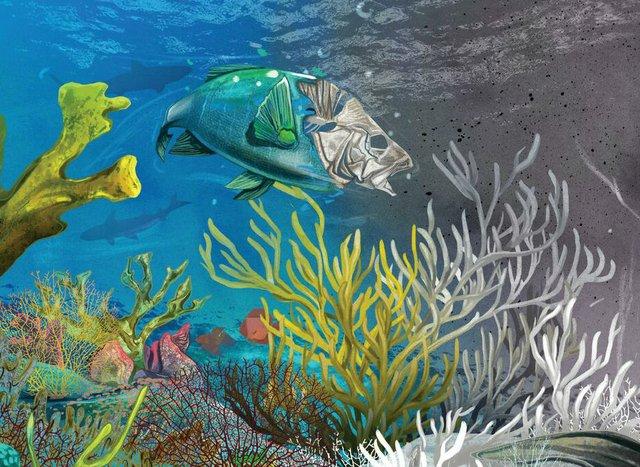Helvarg Dying of the Reefs.jpg