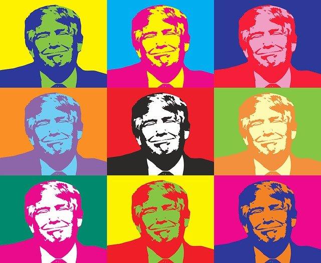 America-Donald-Trump-Election-Donald-Politician-1547274.png