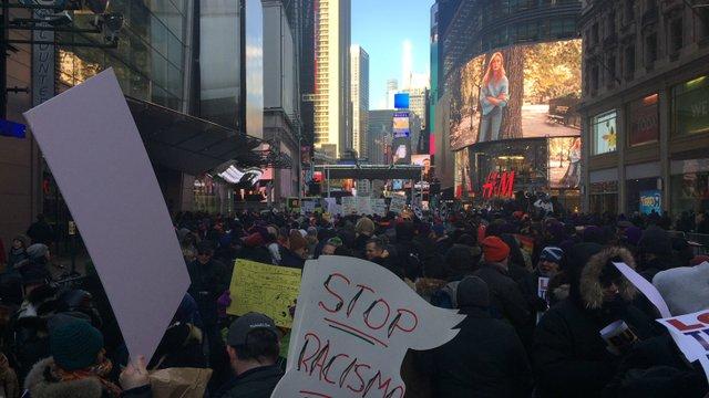 Protest rally MLK day 2018_wiggin.jpg